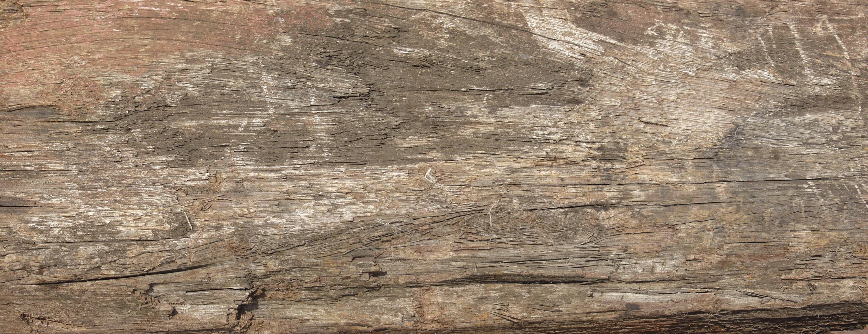 Текстура необработанного дерева: http://junior3d.ru/texture/neobrabotannoeDerevo2.html