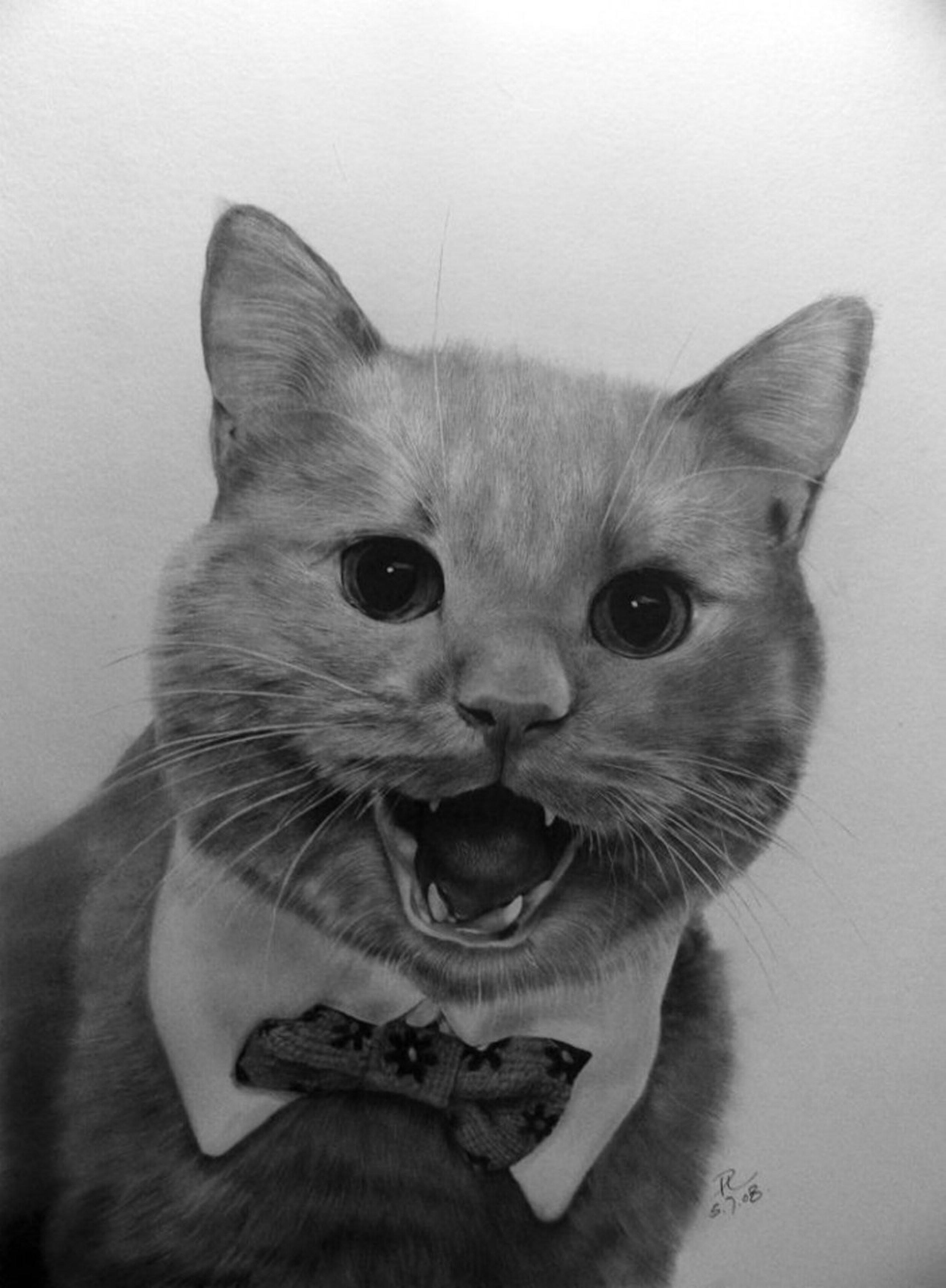 Коты зарубежных художников / коты, кошки, кот, живопись, котоживопись.